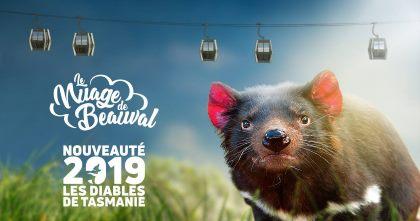 nouveautes zoos 2019
