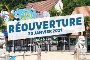 ouverture zoo beauval 2021