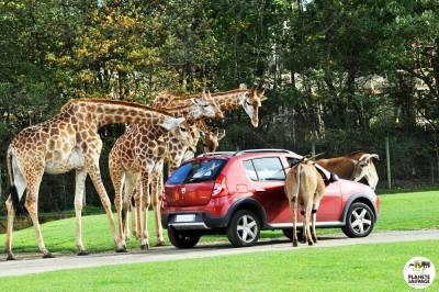 Planète Sauvage ouverture tarifs zoo nantes