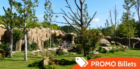 promo billets zoo Beauval