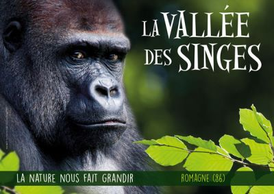 vallée des singes ouverture horaires tarifs