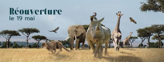 zoo amnéville ouverture tarif billet 2021