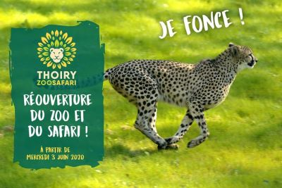 zoo thoiry ouverture 2020 tarif billet