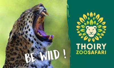 zoo thoiry safari ouverture horaires tarif